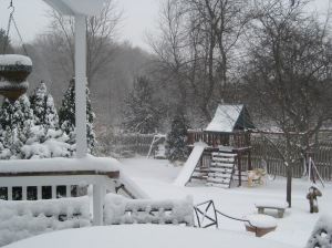Winter 2009 031